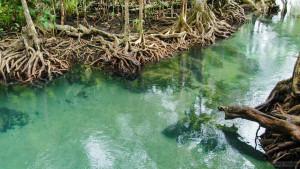 Национальный парк Кхао Пханом Бенча