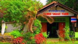 Змеиная ферма на Самуи (Samui Snake Farm)