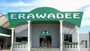 Erawadee - магазин традиционной тайской медицины
